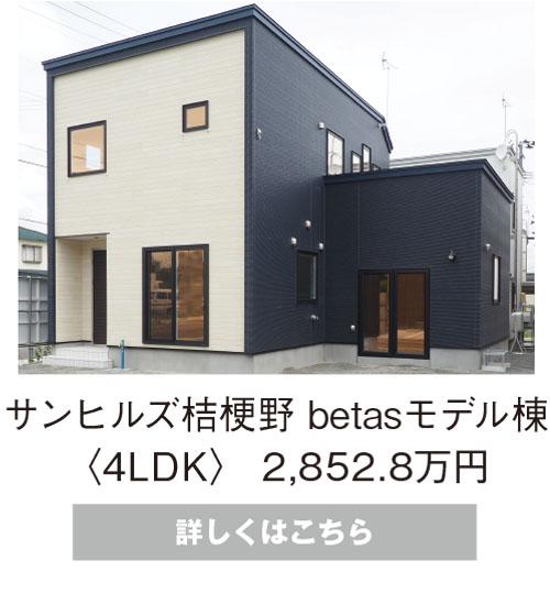 betasモデル棟